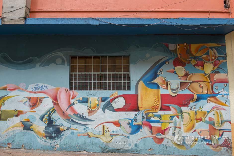 Bogota_grafiti_tour_VirginiedeReynal-10