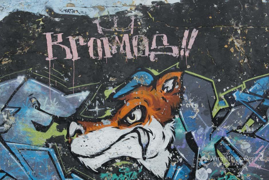 Bogota_grafiti_tour_VirginiedeReynal-12