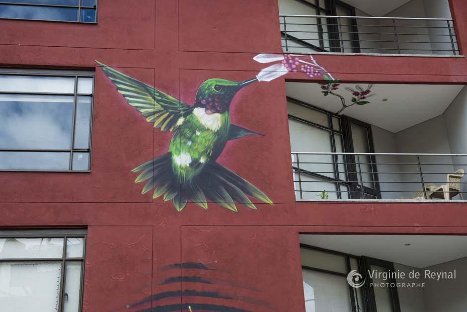 Bogota_grafiti_tour_VirginiedeReynal-17