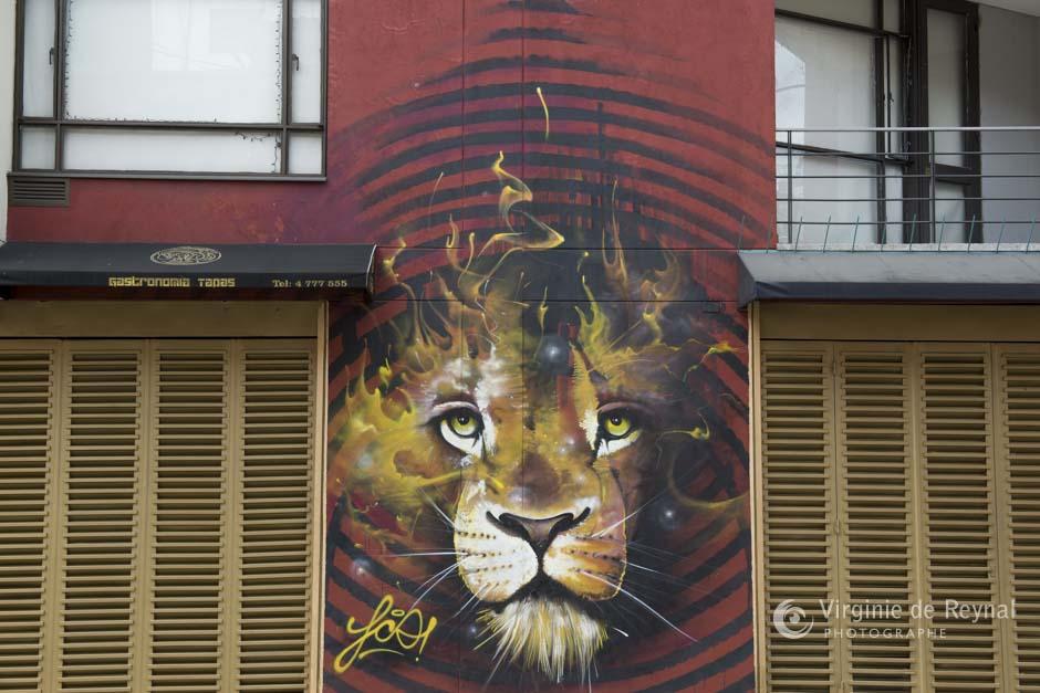 Bogota_grafiti_tour_VirginiedeReynal-18