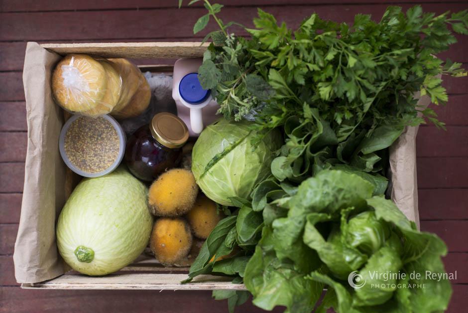 Projeter Sans Frontières - Agriculture Biologique - Virginie de Reyna